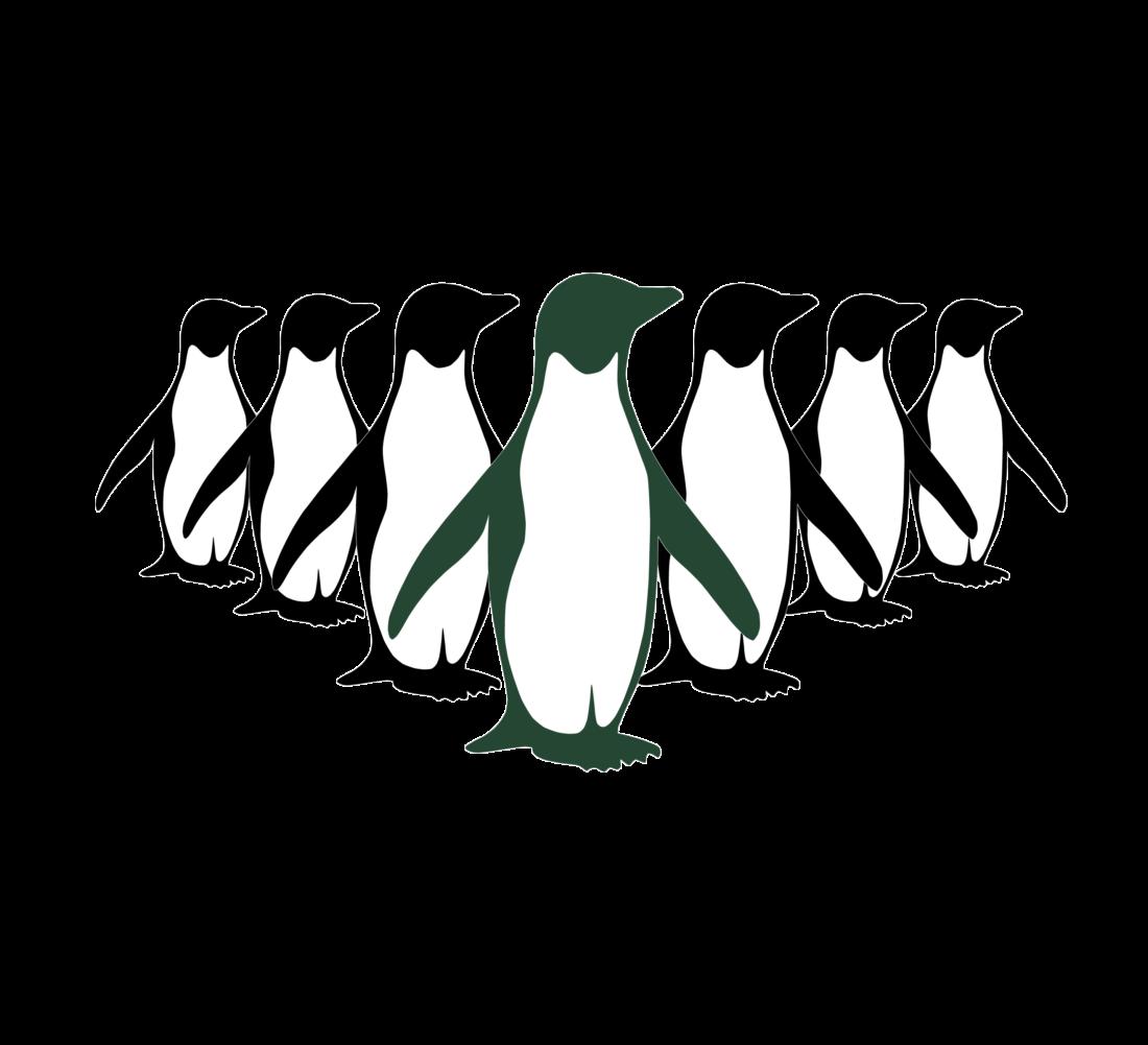 170827_Pinguine